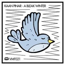 Kaan Pinar, Hubinek & Sperbel Remix - A Bleak Winter