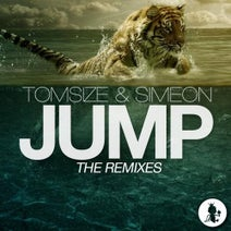 Unknown, Simeon, Tomsize, Head Bash - Jump (The Remixes)