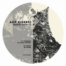 Alix Alvarez - Memory Banks