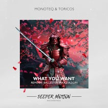Toricos, Monoteq, Ballester, Max Lyazgin - What You Want