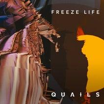 Quails, Point Guard, Touch Of Loft - Freeze Life (Remixes)