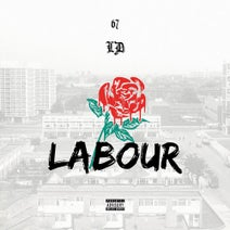 LD - Labour