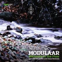 Modulaar, Igor Carmo, HiiRO, Dissa - Welcome to the Flow
