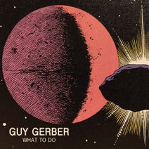 Guy Gerber - What To Do EP