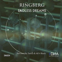TEELCO, Ringberg - Endless Dreams Remixed by Teelco & Alt'n Beats