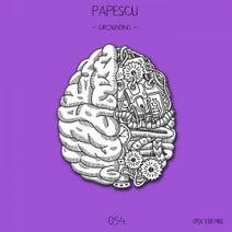 Papescu - Grounding