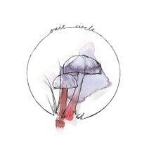 David Mayer, Bastien Picot - The Circle