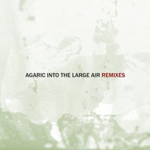 Agaric, Jonas Kopp, Radial, Anders Hellberg, He/aT - Into the Large Air, Pt. 1 (Remixes)