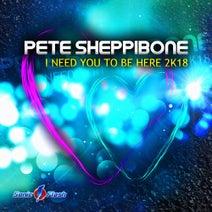 Pete Sheppibone - I Need You To Be Here 2k18