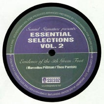 Theo Parrish, Marcellus Pittman - Essential Selections Volume 2