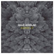 Raul Aguilar - Awake EP