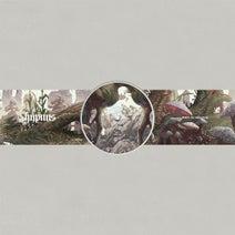 Birds ov Paradise - Plateau