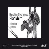 Harry Ken, Ikomowsa - Blackbird