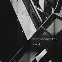 Shlomi Aber, Linkan Ray, Truncate, Valent., Markus Suckut, Jor-el, Skudge, Shlomi Aber - Synchronicity II