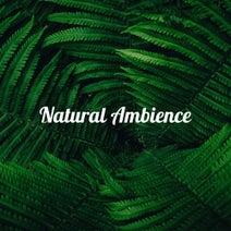 Natural Ambience Relax - Natural Ambience