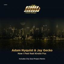 Adam Nyquist, Jay Gecko, Kirstie Fox, City Soul Project - How I Feel