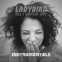 Ladybird, Around7, Chris Carrier, Phil Weeks, Joss Moog, Art Of Tones, JFilt, Chris Stussy - All I Wanna Say (Instrumentals)