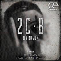 Jin du Jun, exploSpirit, Marcsen W, Stefo, A-Noizes, Polytox - 2 C-B