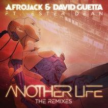 David Guetta, Afrojack, Ester Dean - Another Life