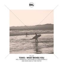Toivo, CarolinaBlue & MisterSmallz, Swen Baez, Tobi Hoefer - What Moves You