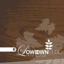 JT Donaldson, The High Plains Drifters, Fred Everything, LawnChair Generals, Craig Bratley, Toka Project, Joey Youngman, Troydon - The Best of Lowdown