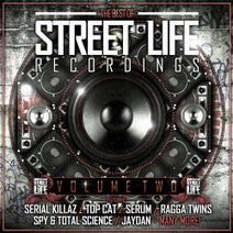 Top Cat & Serial Killaz, Cheshire Cat, GOLD Dubs, Panic, Top Cat, M Rode, Serial Killaz, Ragga Twins, Time, Krome, Serum, Tenor Fly, Serial Killaz, Panic, M Rode, Jaydan, Marcus Visionary, Serum, Total Science, S.P.Y - The Best of Street Life Recordings Vol 2