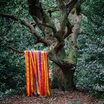 James Holden, The Animal Spirits - The Animal Spirits