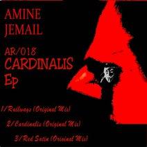 Amine Jemail - Cardinalis