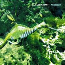 Rauschfaktor - Aquarium