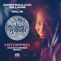 Dawn Souluvn Williams, Wali B, David Harness - I Stopped (David Harness Remix)
