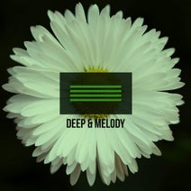 Afro Carrib, Trax Machine, Steff Corner, Lady of Victory, ZoZoo - Deep & Melody 7