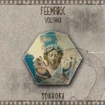 Feemarx - Volcano