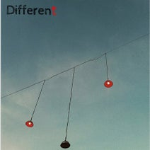 Cavaan, Alles Andrs, Mri, Holy Wood, Rodden von Ast, Beautiful Noise, Filou, Everest, President Bongo, Robag Wruhme, Johannes Heil - Different
