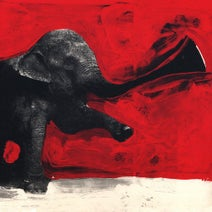 C'Mon Tigre, Populous, Dj Khalab - Elephant RMX
