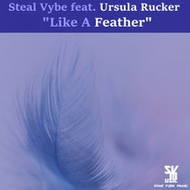 Ursula Rucker, Steal Vybe, Chris Forman - Like A Feather
