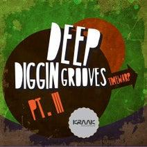 Timewarp - Deep Diggin Grooves, Pt. III