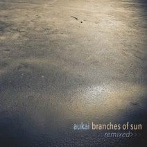 Aparde, Aukai, Ben Lukas Boysen, Parra for Cuva - Branches of Sun Remixed