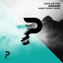 Haus On Fire, Robert Babicz - Awaken