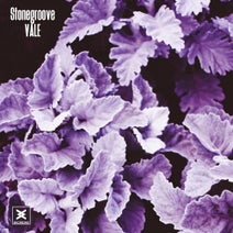 Stonegroove - Vale