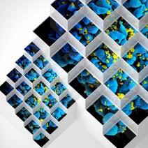 Bluetech, Pan Electric, DF Tram, Mixmaster Morris, Saafi Brothers, Desert Dwellers, Living Light, Youth, David Last, Gaudi, Ian Boddy, Backstage Gurus, Takkra Satori - Liquid Geometries in Dub