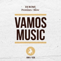 DJ Romi - Promises / Blow