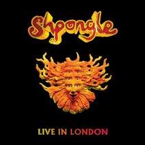 Shpongle - Live in London (2013) (Live)