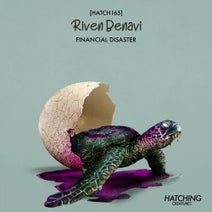 Riven Benavi - Financial Disaster