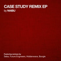Naibu, Seba, Future Engineers, Hiddenwave, Bungle - Case Study Remix EP