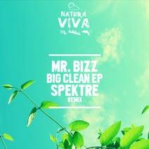 Mr. Bizz - Big Clean EP