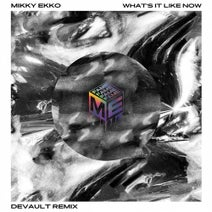 Mikky Ekko, Devault - What's It Like Now