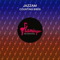 Jazzam - Counting Birds