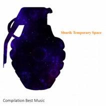 Shurik - Temporary Space