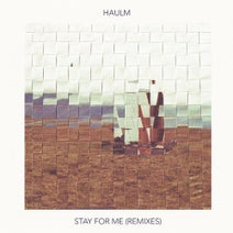 Haulm, BAILE, Nuage, Kauf, Speaking In Tongues, Dayspired, Bedstudy, Su Na - Stay for Me (Remixes)