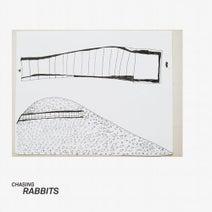 Oilst, Ben Jarli, O/Y, Molto - Chasing Rabbits